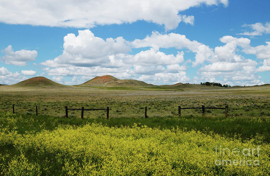 Montana Photograph - Western Color by Shawn Smith