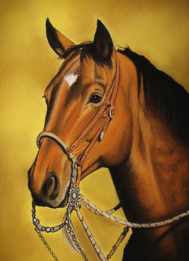 Horse Pastel - Western Horse by Lucy Deane