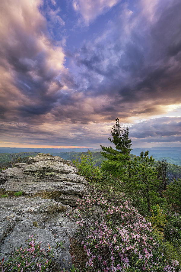 Western North Carolina Photograph - Western North Carolina - Purple Rain by Jason Penland