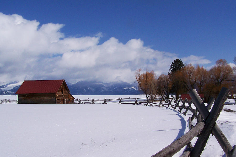 Landscape Photograph - Western Winter by Teresia Moore