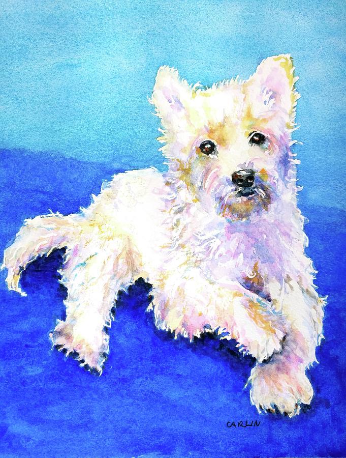 West Highland Terrier Painting - Westie Painting In Watercolor  by Carlin Blahnik CarlinArtWatercolor
