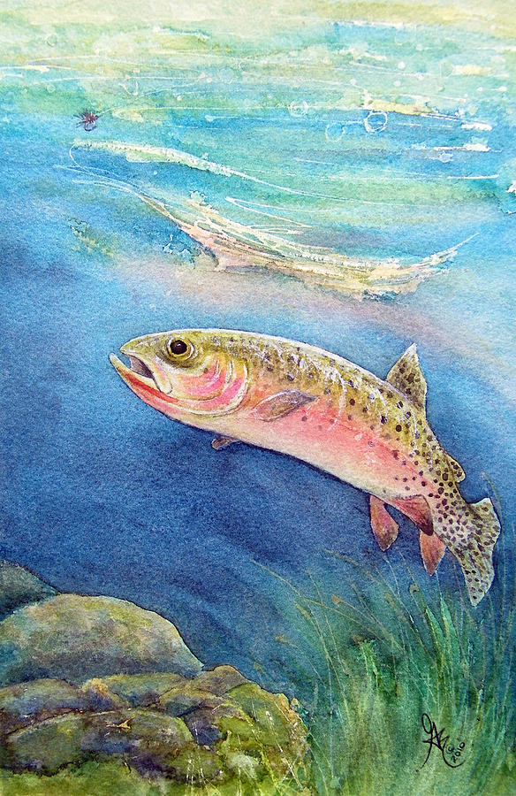 Trout Painting - Westslope Cutthroat by Gale Cochran-Smith