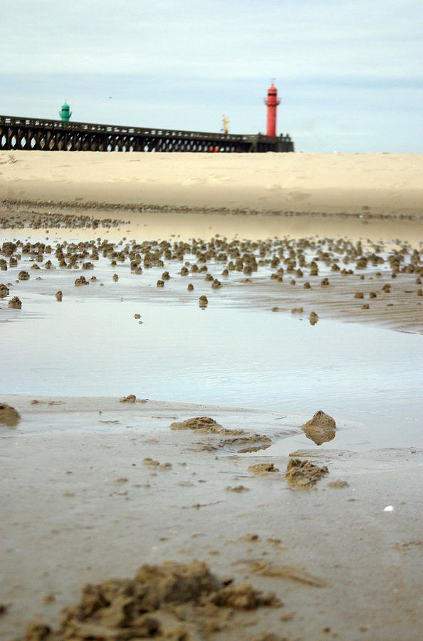 Photographer Photograph - Wet Sands by Jez C Self