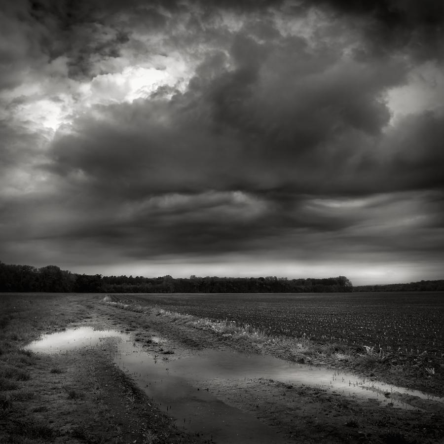 Landscape Photograph - Wet Spring by Jaromir Hron