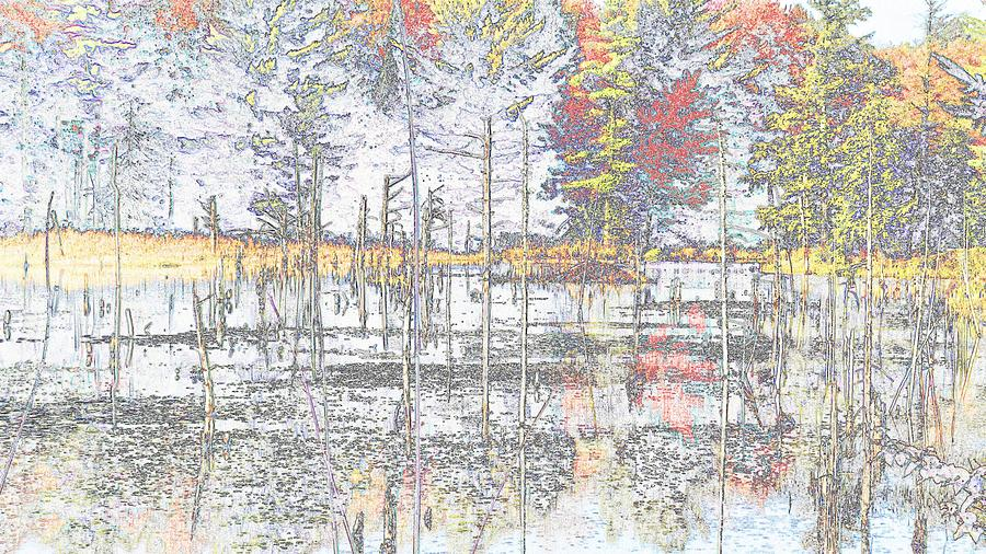 Wetland Reflections Abstract Photograph
