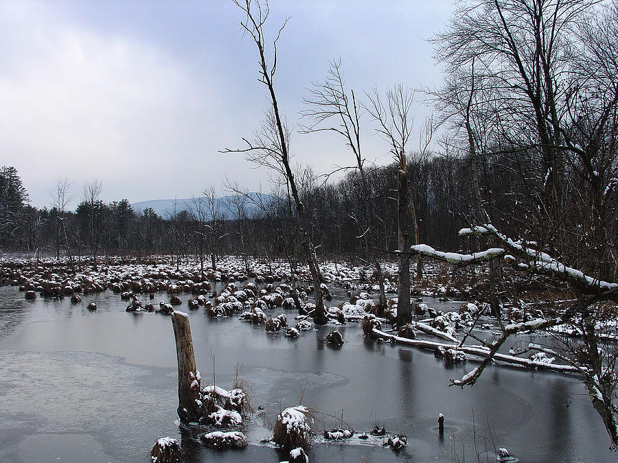 Palenville Photograph - Wetlands Below High Peak As Winter Moves In by Terrance DePietro