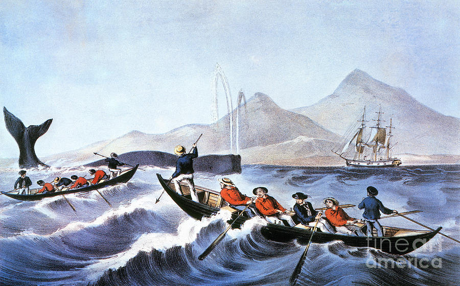 Painting - Whale Fishery, Laying On by Granger