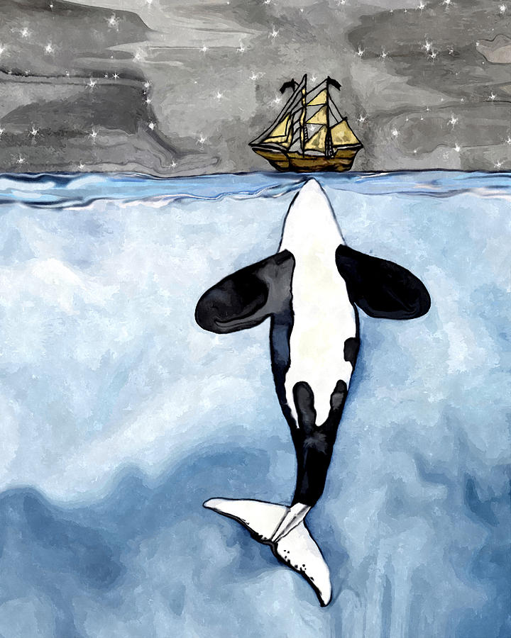 Orca Whale Drawing - Whale Orca kisses a boat by Midex Planet