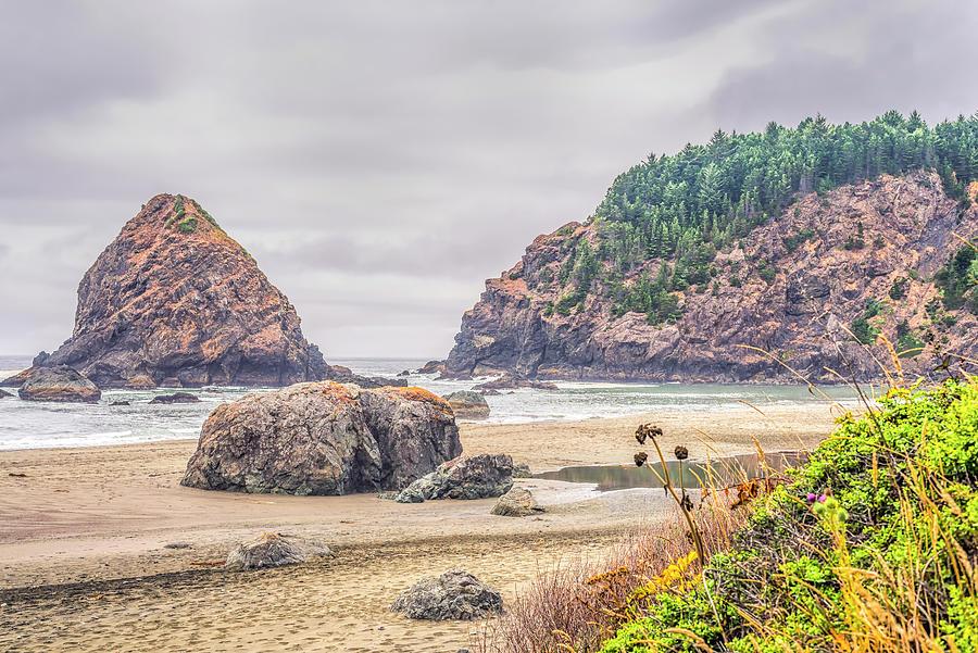 Oregon Photograph - Whaleshead Beauty #1 by Joseph S Giacalone