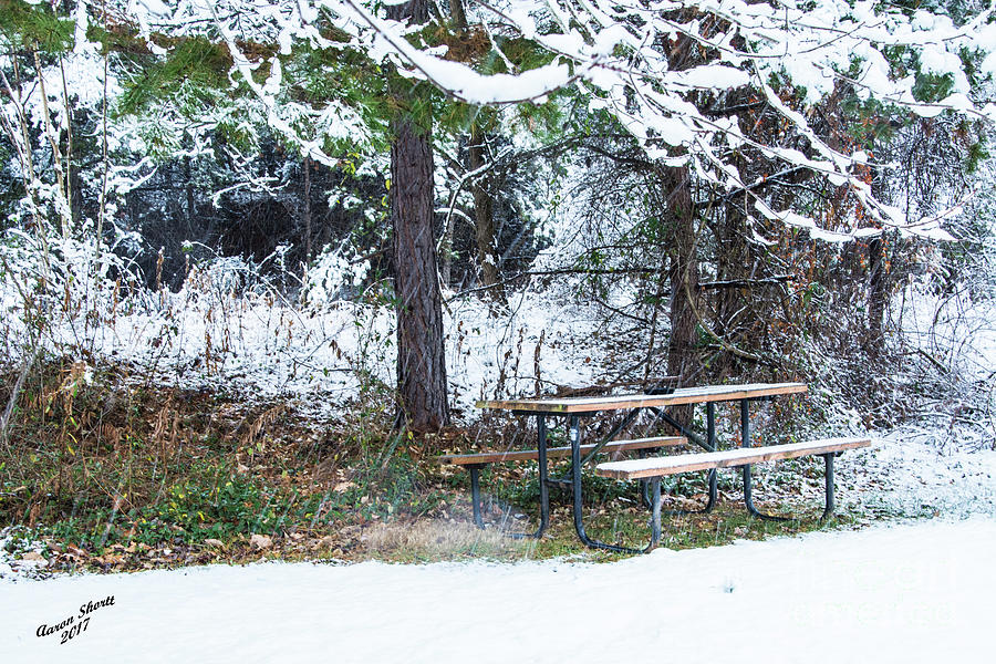 Snow Photograph - What A Day For A Picnic by Aaron Shortt