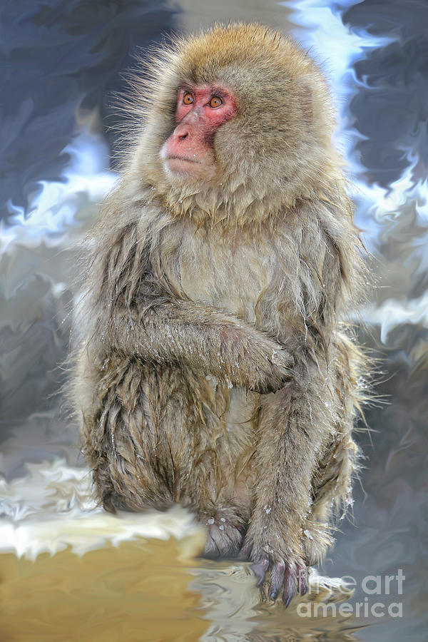 Snow Monkeys Photograph - What Did You Just Say? by Leigh Lofgren