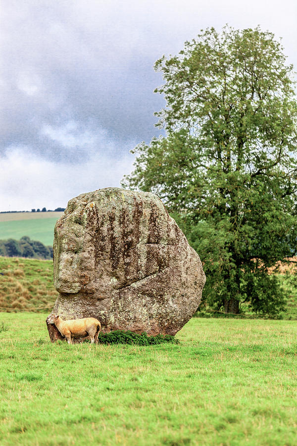 Avebury Photograph - What Megalith? by W Chris Fooshee
