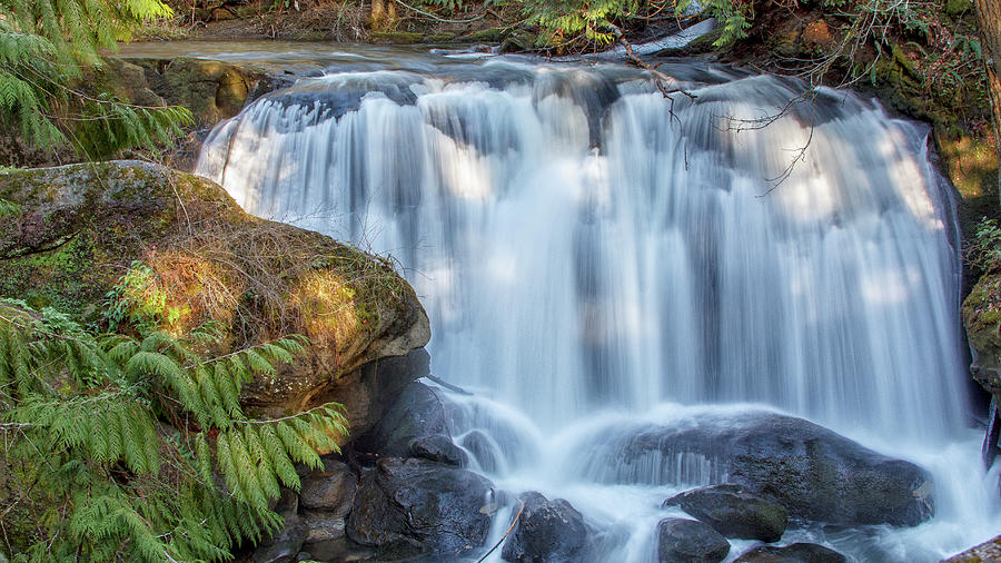 Whatcome Falls by Tony Locke