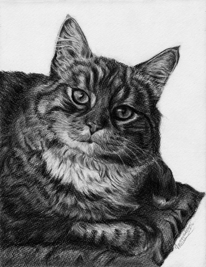 Tabby Drawing - Whats For Dinner by Jyvonne Inman