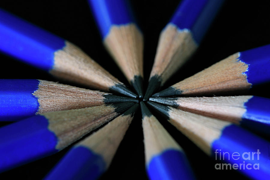 Pencils Photograph - Whats The Point by Tracy Hall