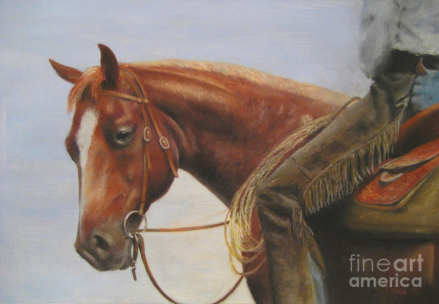 Horse Painting - Whats Up by Sabina Haas