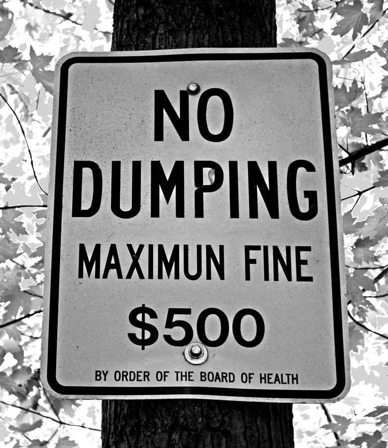What's Wrong With This Sign Photograph by Lori Tambakis