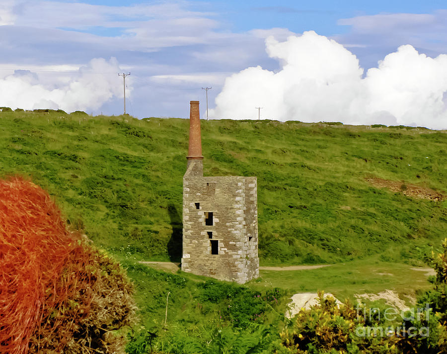 Wheal Prosper Rinsey With Dodder Photograph