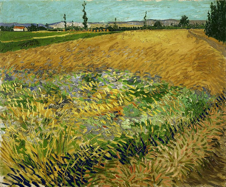 Nature Painting - Wheat Field With Alpilles Foothills In The Background At Wheat Fields Van Gogh Series, By Vincent  by Artistic Panda