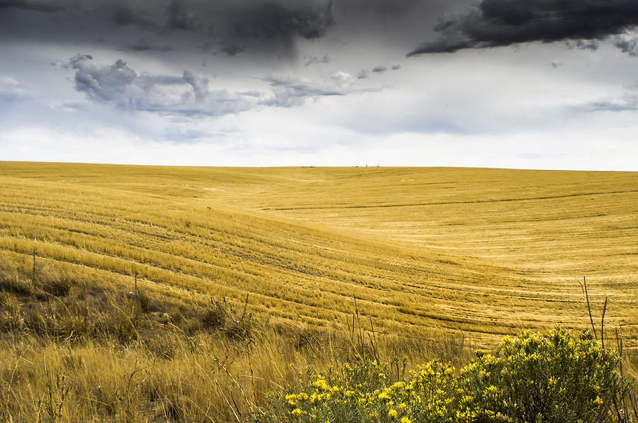 Autumn Photograph - Wheat Fields With Storm by John Trax