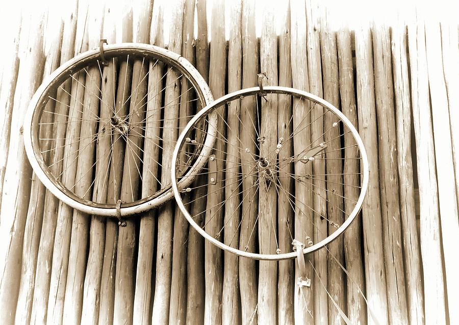 Wheels On Bamboo Photograph