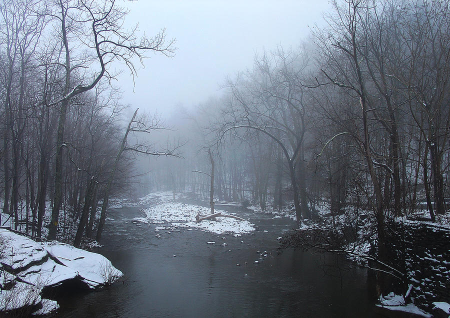 Fog Photograph - When A Foggy Cloud Calms And Muffles The Kaaterskill Creek by Terrance DePietro