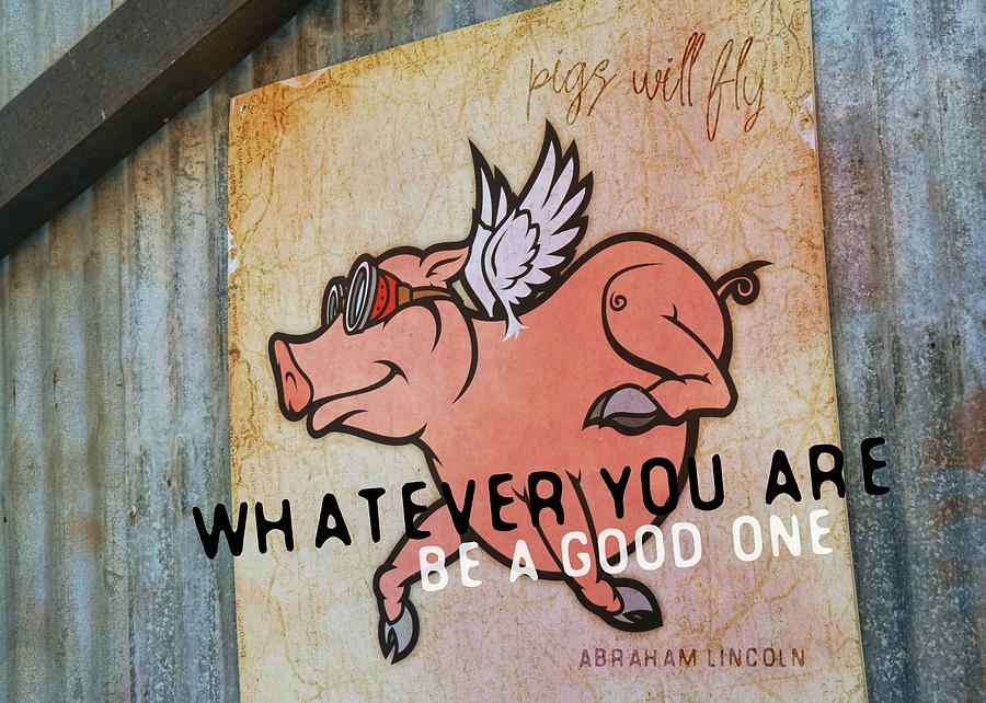 Abraham Photograph - When Pigs Fly Quote by JAMART Photography