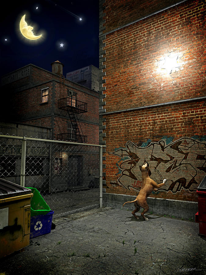 City Digital Art - When Stars Fall In The City by Cynthia Decker