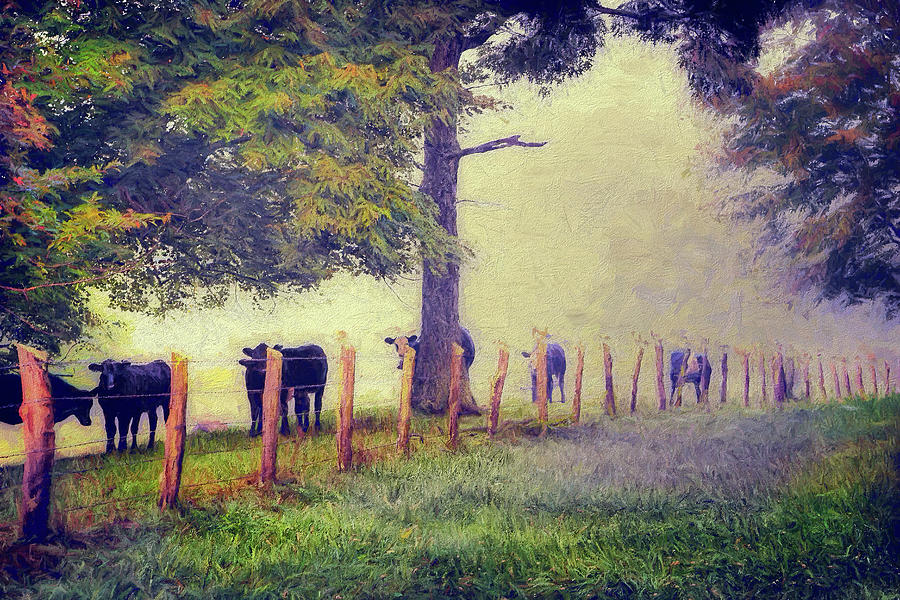 When the Cows Come Home - Blue Ridge AP by Dan Carmichael