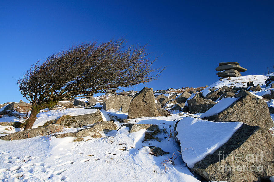 Bodmin Moor Photograph - When The North Wind Blows..... by Carl Whitfield