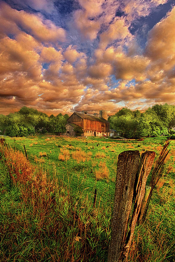 Summer Photograph - When Theres No One Around by Phil Koch