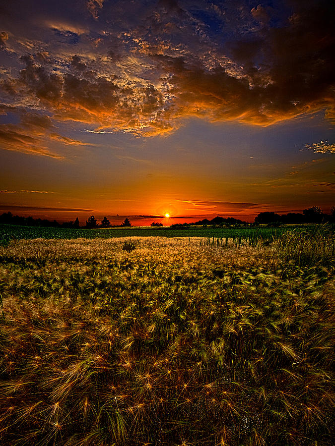 when time stood still photograph by phil koch