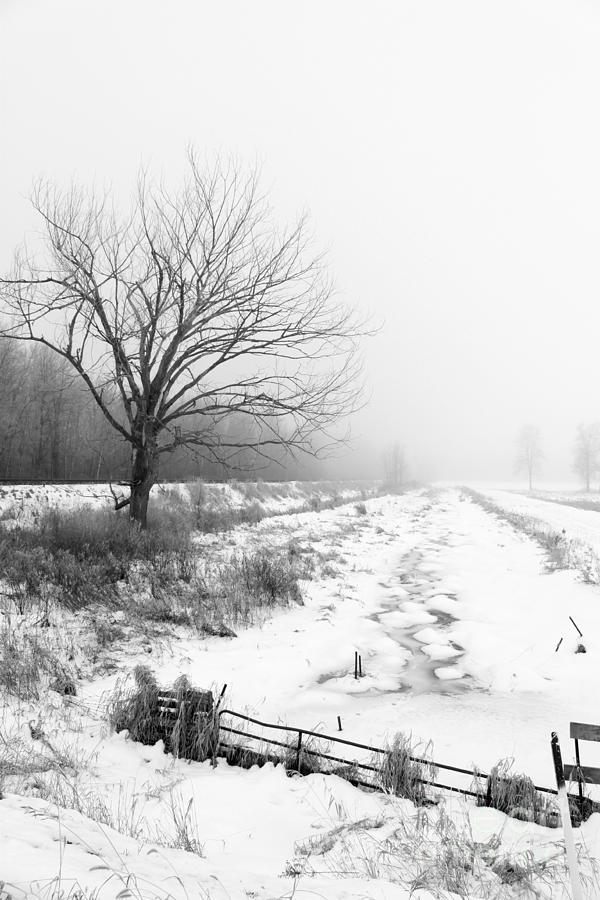 Winter Photograph - When Winter Comes by Cathy  Beharriell