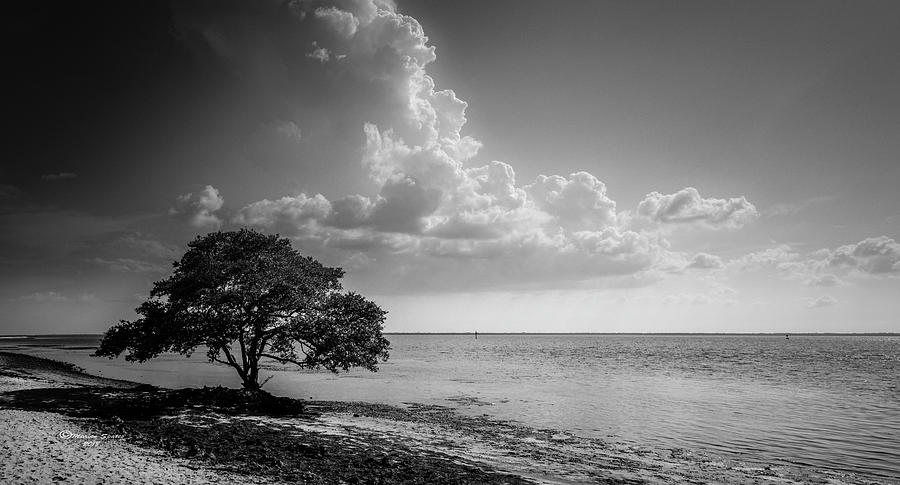 Clouds Photograph - When You Are Alone by Marvin Spates
