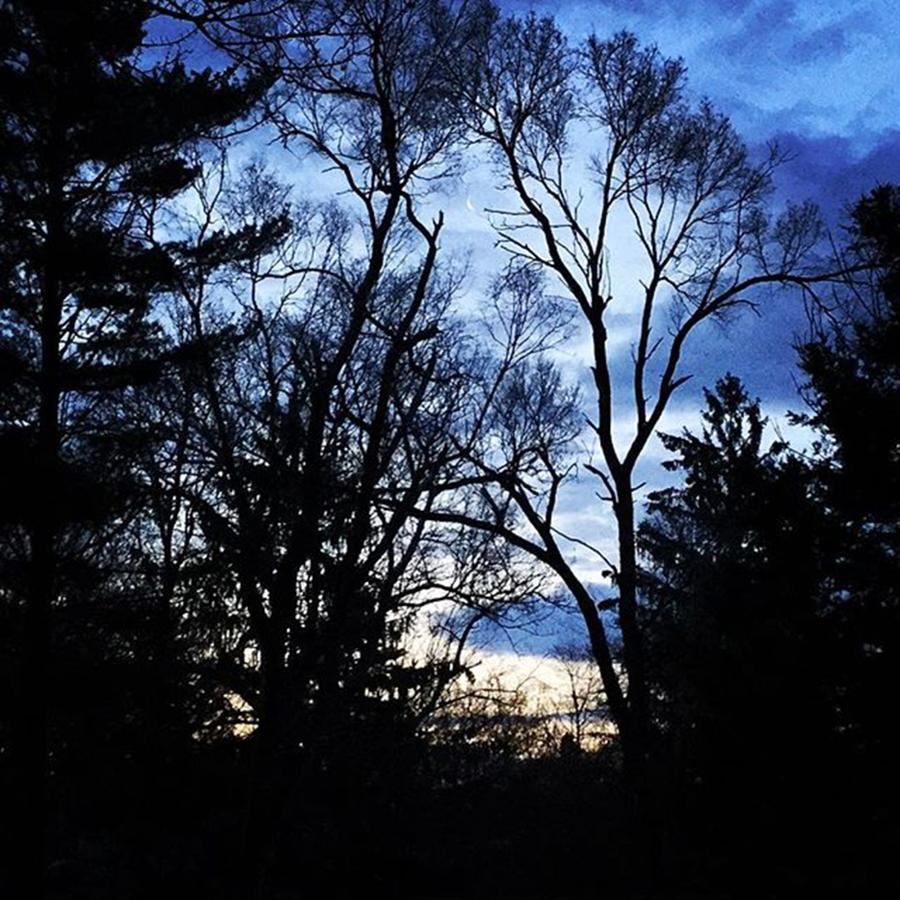 Nature Photograph - Where Have You Been. by Frank J Casella