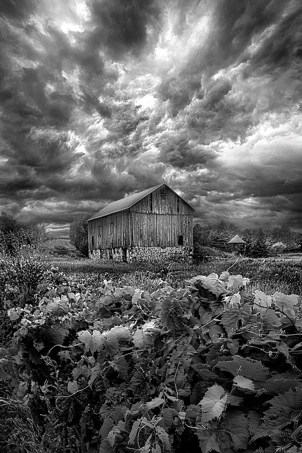 Summer Photograph - Where Ghosts Of Old Dwell And Hold by Phil Koch