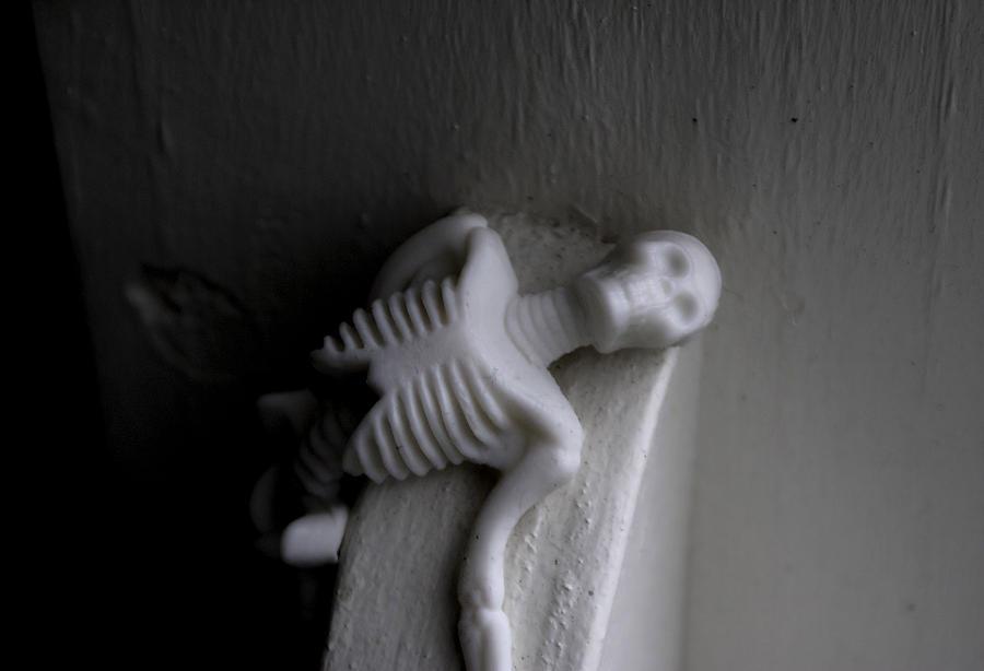 Skull Photograph - Where I Lie by Ash Sivils