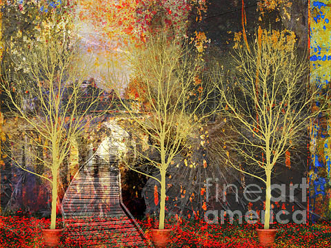 Trees Digital Art - Where Shall We Go From Here by Marti Wedewer
