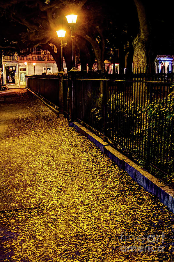 Where The Sidewalks Are Paved With Gold Photograph