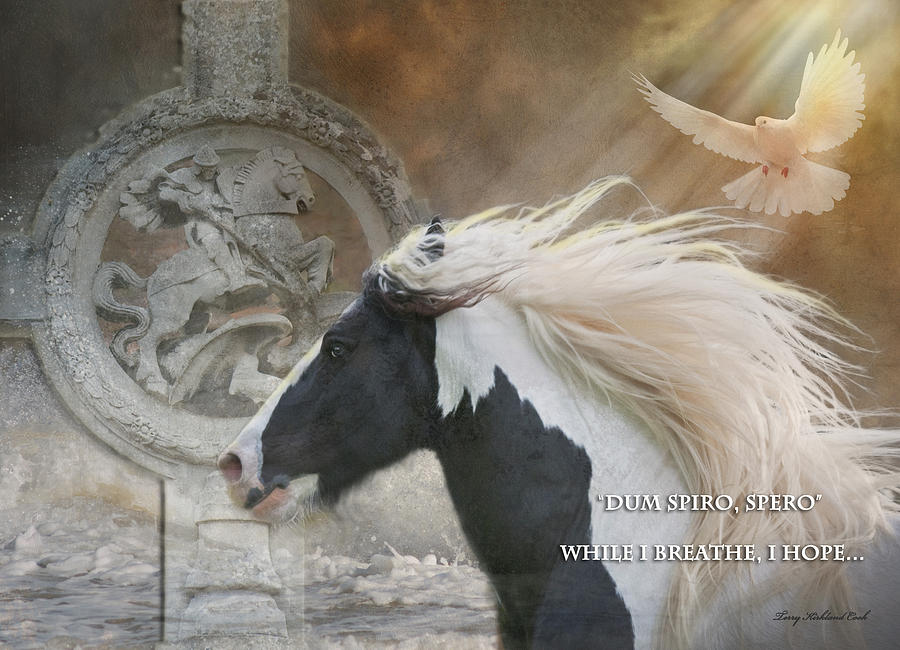 Equine Photograph - While I Breathe I Hope by Terry Kirkland Cook