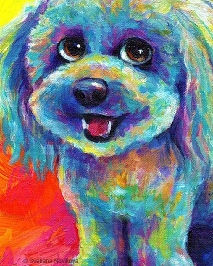 Cute Photograph - Whimsical Labradoodle Painting By by Svetlana Novikova