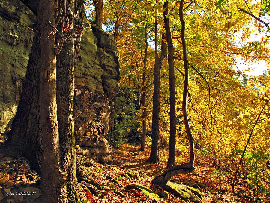 Autumn Photograph - Whipps Ledges In Autumn by Joan  Minchak