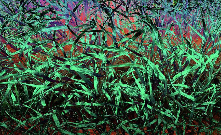 Whispering Grass Photograph by David Pantuso