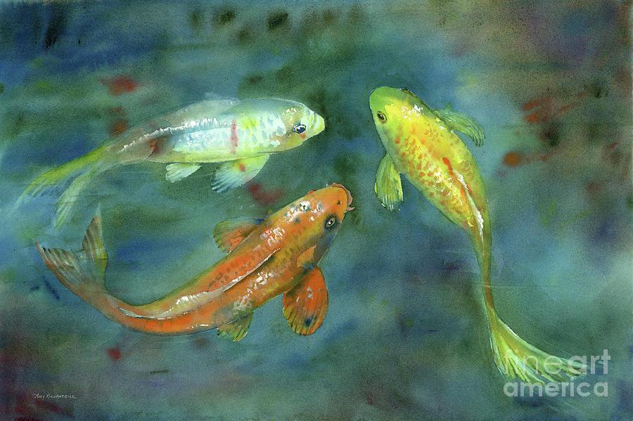 Watercolor Koi Painting - Whispering Koi by Amy Kirkpatrick