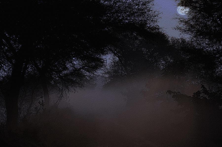 Forest Digital Art - Whispering Mist by Manjot Singh Sachdeva