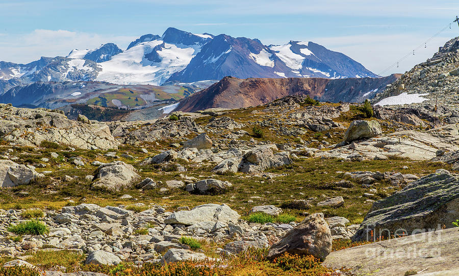 Whistler Summer Hike Photograph