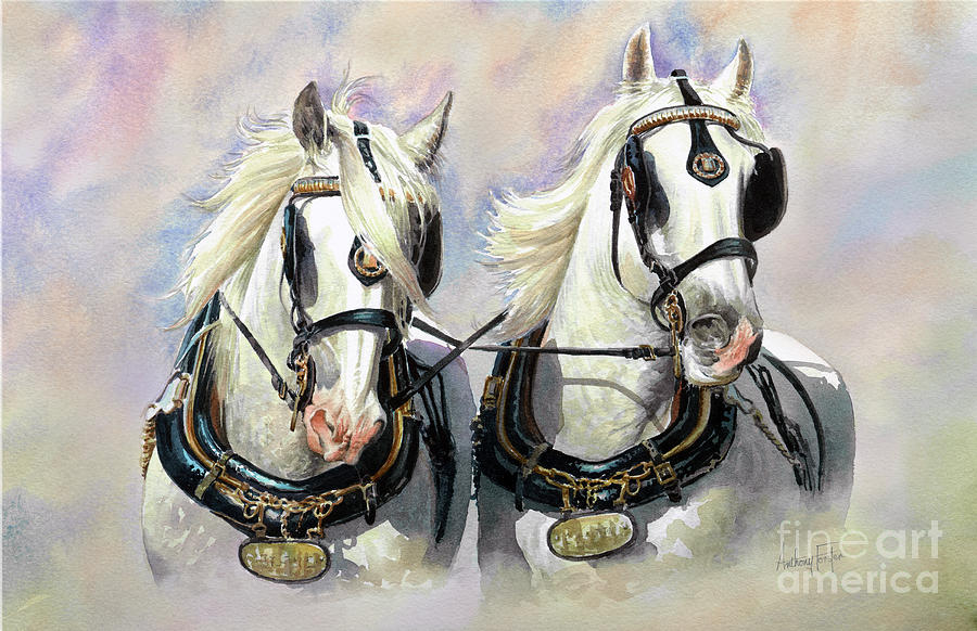 Shire Horses Painting - Whitbread Shires by Anthony Forster