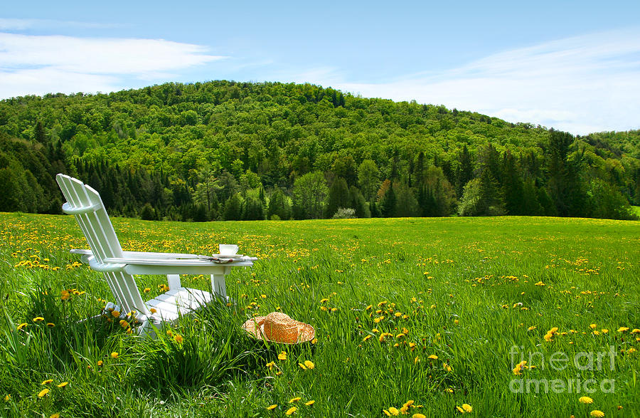 Adirondack Digital Art - White Adirondack Chair In A Field Of Tall Grass by Sandra Cunningham