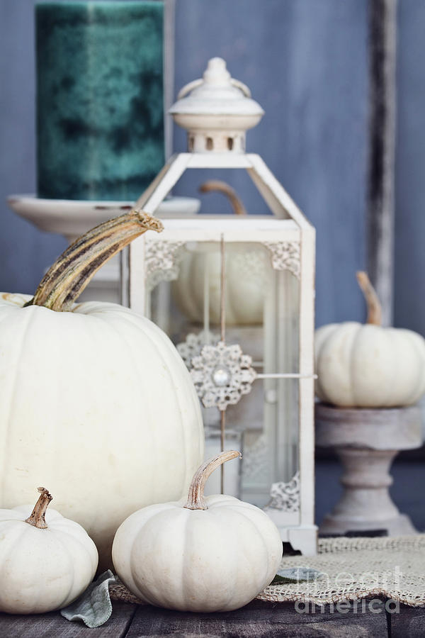 White Autumn Decorations by Stephanie Frey