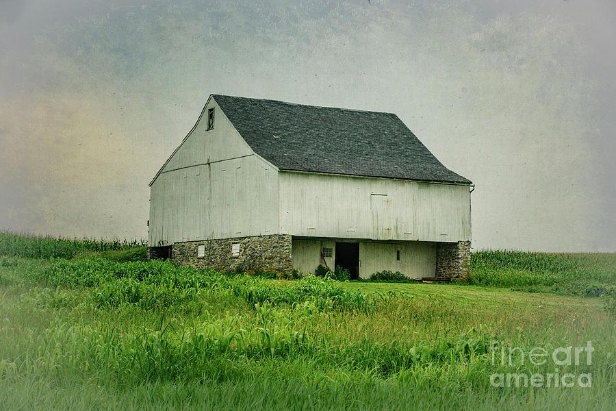 White Barn by Debra Fedchin